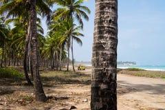 Vuile Weg in Maracaipe - Pernambuco, Brazilië Stock Foto