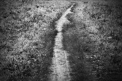 Vuile weg onder gras in aard Stock Afbeelding