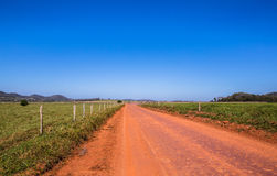 Vuile weg op het groene gebied Stock Fotografie