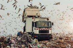 Vuilnisauto op een stortplaats Royalty-vrije Stock Afbeelding