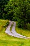 Vuiloprijlaan en boom op een grasrijke heuvel Royalty-vrije Stock Afbeeldingen