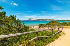 Vuilweg aan het strand royalty-vrije stock foto's