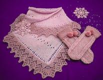 Vuisthandschoenen en sjaal op een lilac achtergrond royalty-vrije stock afbeelding