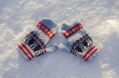 Vuisthandschoenen in sneeuw Royalty-vrije Stock Foto's