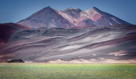 Vulcão de Caichinque de Salar de Talar, águas próximas Calientes, dentro imagens de stock royalty free