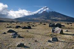 Vulcão de Cotopaxi em Equador Foto de Stock