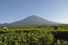Vulcão de Kerinci Fotos de Stock