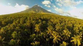 Vulcão de Mayon perto da cidade de Legazpi em Filipinas Vista aérea sobre a selva e a plantação da palma no por do sol Vulcão de  imagens de stock royalty free
