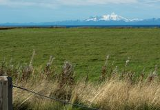 Vulcão do Mt Illiama através do campo de grama e do cozinheiro Inlet Foto de Stock