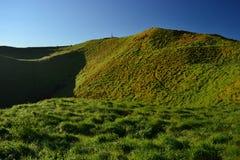 Vulcão do Mt Wellington em Auckland, Nova Zelândia imagem de stock royalty free
