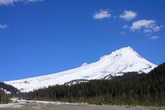 Vulcão dos estratos da capa da montagem na mola, Oregon foto de stock royalty free