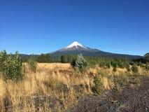 Vulcão Osorno imagem de stock