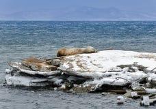 Vulcões da península de Kamchatka, Rússia. Foto de Stock