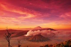 Vulcões do parque nacional de Bromo, Java Imagem de Stock Royalty Free
