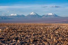 Vulcões Licancabur e Juriques, Atacama Imagens de Stock