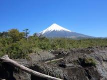 vulcan的奥索尔诺火山,辣椒 库存图片