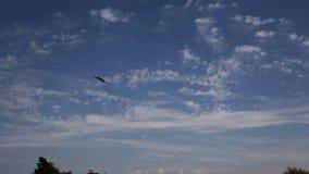 Vulcan niebieskie niebo z biel chmurą i bombowiec zdjęcie wideo