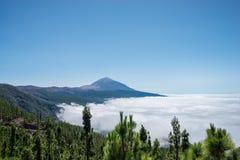 Vulcan Teide nad chmury Zdjęcia Stock