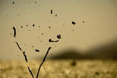 Vulcanetti di Regnano Stock Photo