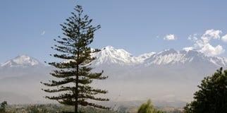 Vulcani Misti e Chachani, Perù Immagine Stock