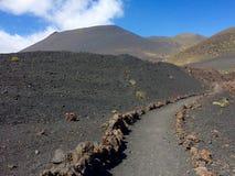 Vulcani su La Palma, Canarie Fotografia Stock Libera da Diritti