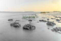 Vulcanic Stones. On the beach in hilton head island stock photo