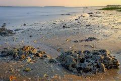 Vulcanic Stones. On the beach in hilton head island stock photos