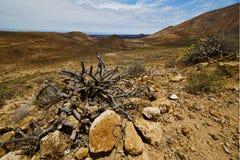 Vulcanic timanfaya  rock stone sky  hill Royalty Free Stock Photos