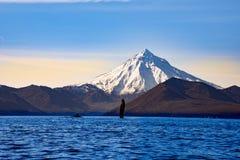 Vulcano attivo in Kamchatka Fotografie Stock Libere da Diritti