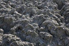 Vulcano del fango in Lokbatan vicino a Bacu l'azerbaijan Fotografie Stock Libere da Diritti