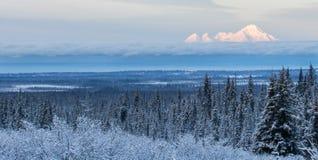Vulcano del Iliamna nell'inverno Immagini Stock Libere da Diritti