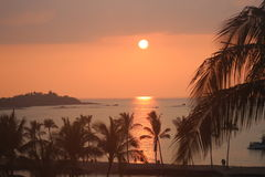 Vulcano della natura delle palme di alba di tramonto di Kona Hawai Fotografia Stock Libera da Diritti