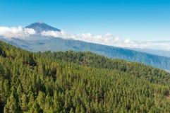 Vulcano di EL Teide, Tenerife, Spagna fotografia stock libera da diritti