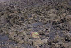 Vulcano di Etna, Italia fotografie stock