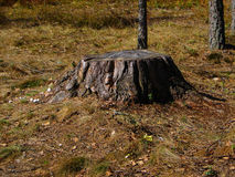 Vulcano di legno Fotografia Stock