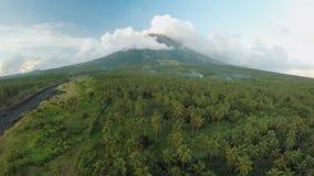 Vulcano di Mayon vicino alla città di Legazpi in Filippine Vista aerea sopra la giungla e la piantagione della palma al tramonto  archivi video