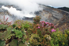 Vulcano di Poas in Costa Rica Fotografie Stock Libere da Diritti