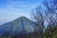 Vulcano ed alberi verdi contro cielo blu sull'isola di Java Immagine Stock Libera da Diritti