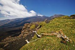 Vulcano Etna Fotografia Stock