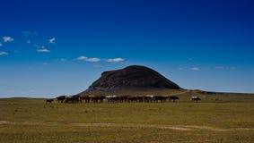 Vulcano Inner Mongolia dello Zhen Zhi Fotografie Stock