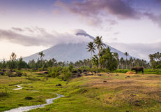 Vulcano Mount Mayon in the Philippines royalty free stock photography