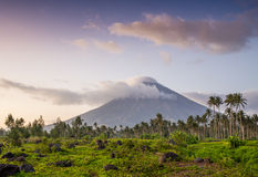 Vulcano Mount Mayon in the Philippines Stock Image
