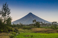 Vulcano Mount Mayon in the Philippines Stock Photography