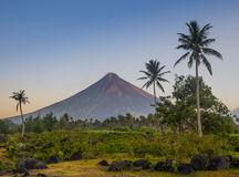 Vulcano Mount Mayon in the Philippines Royalty Free Stock Images