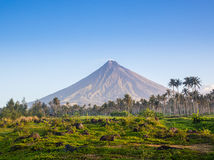 Vulcano Mount Mayon in the Philippines Stock Images