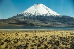 Vulcano Parinacota e lago Chungara Fotografie Stock Libere da Diritti