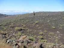 Vulcano scenery of La Palma Stock Photography