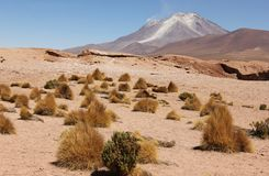 Vulcano sul Altiplano della Bolivia immagine stock