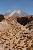 Vulcano sul boliviano Altiplano fotografie stock