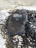 Vulcanoes грязи Стоковая Фотография RF